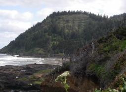 Yachats River area