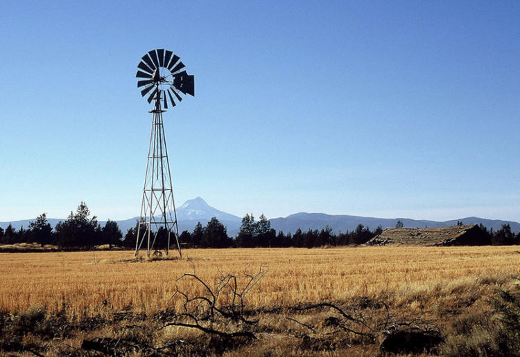 Farmland in central Oregon.